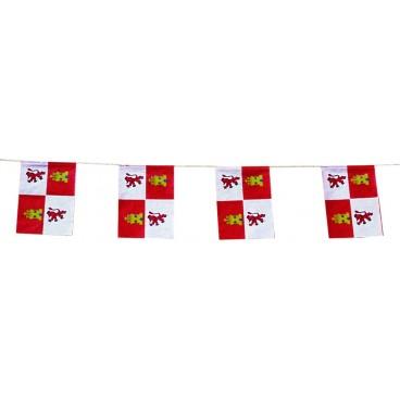 Banderas Castilla Y León Plástico 50 M.