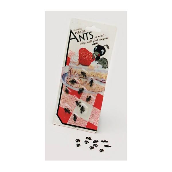 Hormigas Negras Goma